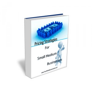 Product Book   Pricing Strategies for Small Medium Businesses 300x300 Small Business Coaching For Entrepreneurs
