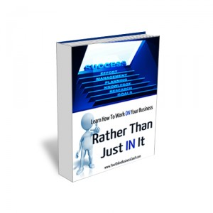 Product Book   Work ON Your Business 300x300 Small Business Coaching For Entrepreneurs